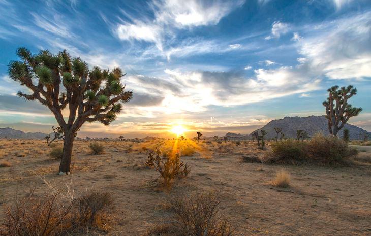 california-desert