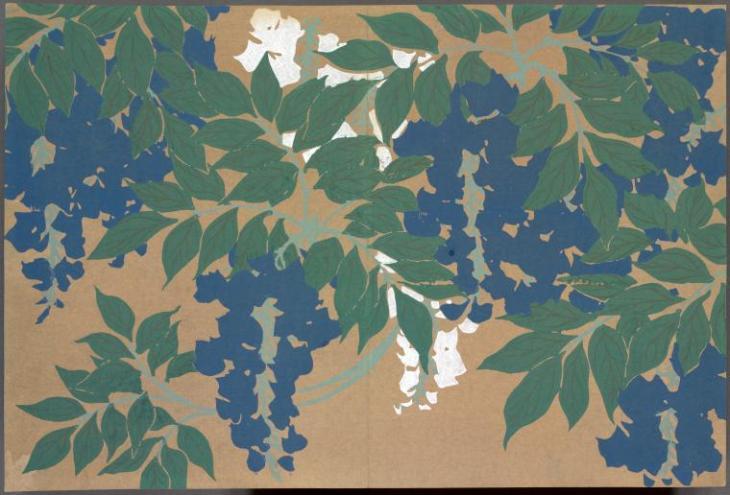 acm wisteria