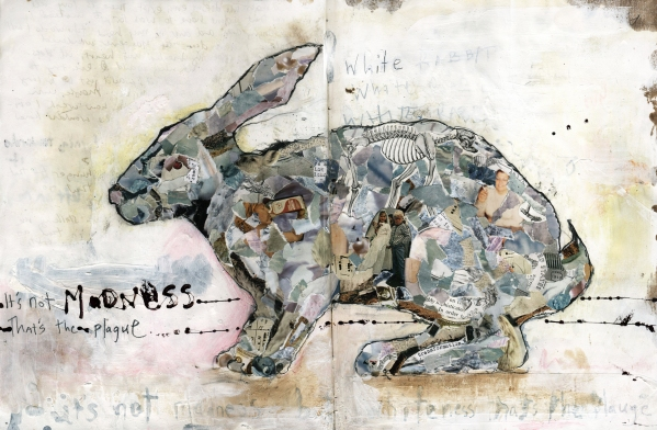 edgerton rabbit