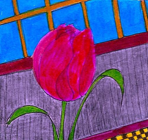 7-tulip